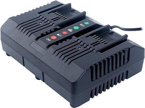 Amazon.com: Lasica WA3875 20 V Li-ion Dual Port 2 horas ...