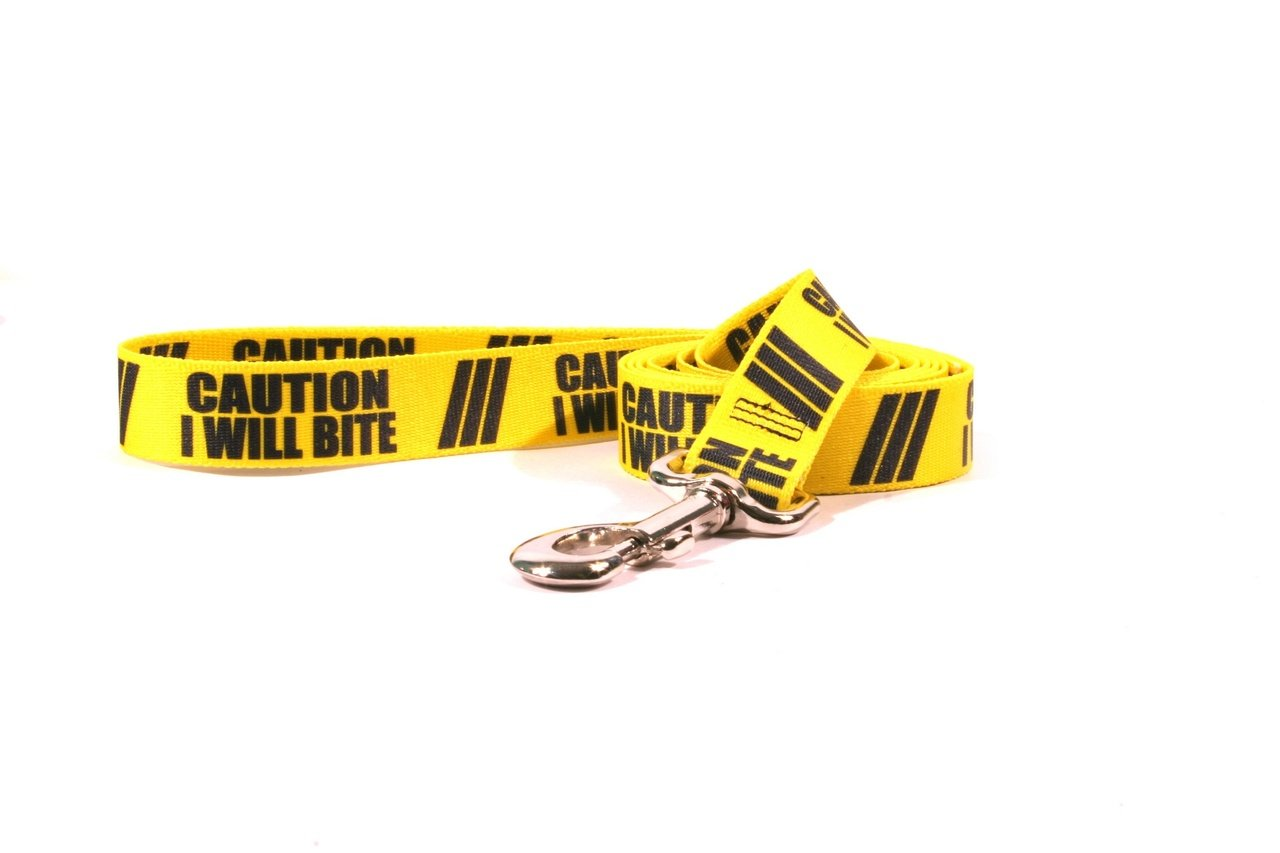 Yellow Dog Design Caution I Will Bite Dog Leash with Standard Loop Handle, 1'' Wide