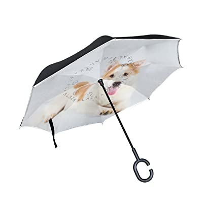 hot sale 2017 La Random Beautiful Cute Puppy Thai Bangkaew Inverted Umbrella Double Layer Windproof UV Protection Compact Car Reverse Umbrella