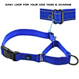 Max and Neo Nylon Martingale Collar - We Donate a