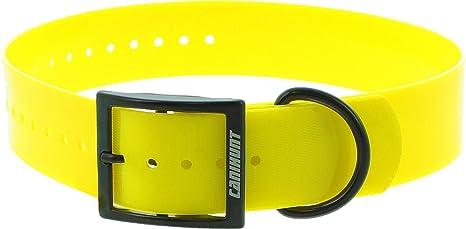 Collar Poliuretano canihunt Xtreme – 70 cm: Amazon.es: Productos ...