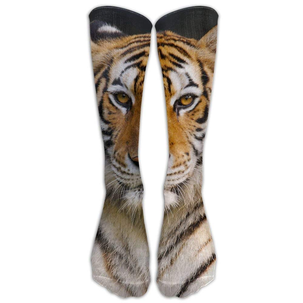 Long Dress Socks Casual Tiger Wild Animal Soccer Comfortable Breathable Over-the-Calf Tube loejrfw