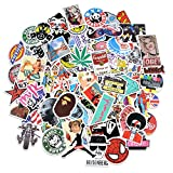 PC Hardware : Breezypals 100 Pcs Waterproof Vinyl Stickers for Laptop, Car, Skateboard, Luggage