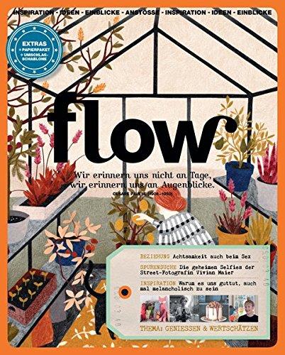Flow Nummer 13