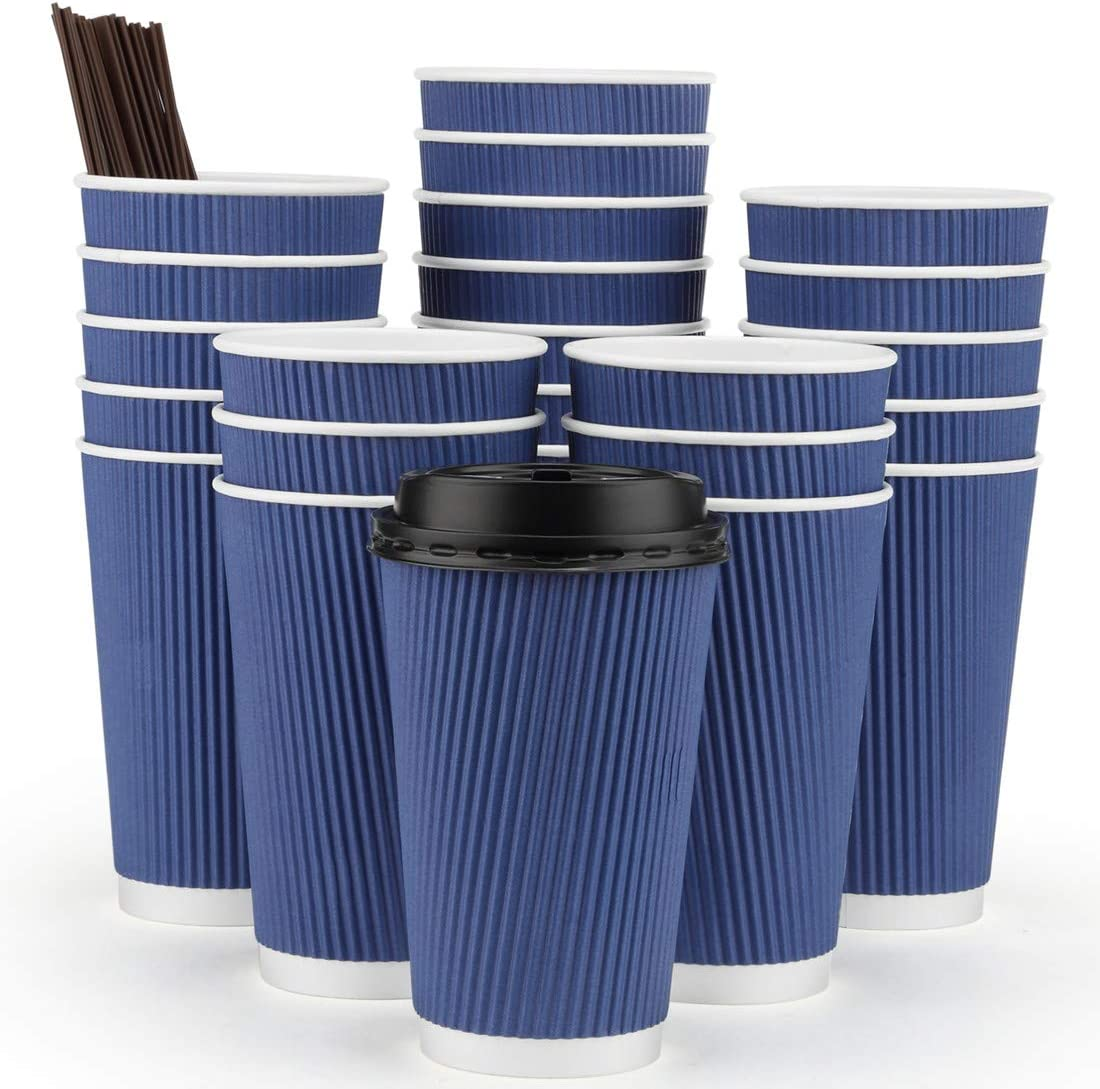 Eupako 16 oz Disposable Coffee Cups with Lids and Straws, Large Ripple Wall Hot Paper Drink Cups To Go, Perfect for Cappuccino, Hot Cocoa or Iced Drinks, 60 Set