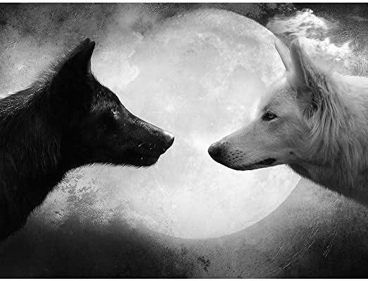 amazon com black wolf and white wolf wildlife animal art print poster wall decor home decor 32x24inches posters prints black wolf and white wolf wildlife animal art print poster wall decor home decor 32x24inches