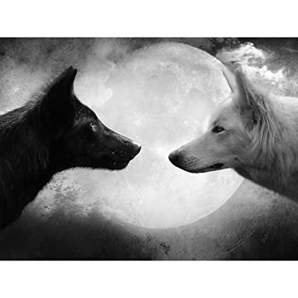 Black wolf and white wolf wildlife animal art print poster wall decor home decor24x16inches
