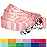 Blueberry Pet 12 Colors Durable Classic Dog Leash 5 ft x 5/8', Baby Pink, Small, Basic Nylon Leashes for Dogs