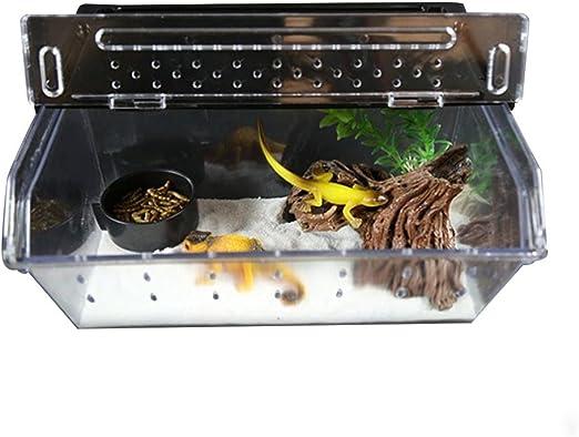 per Cajas de Cría para Insectos Caja de Escotilla de Reptiles ...