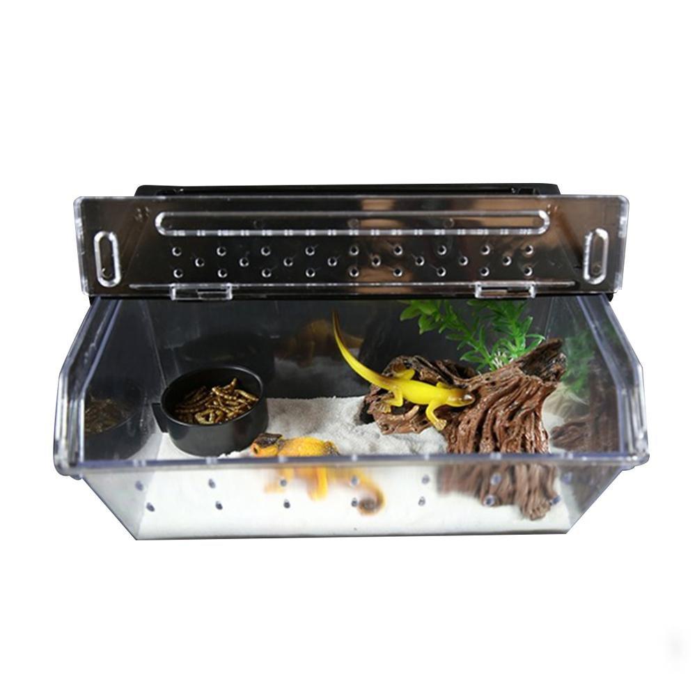 Purebesi Boîte d'élevage de Reptiles en Acrylique pour Reptile, Serpent, araignées, lézard, Scorpion, Mille-Pattes, Cornu, Grenouille, Gecko, coléoptère, Insecte