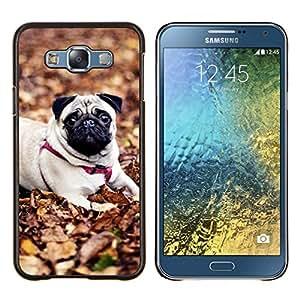 YiPhone /// Prima de resorte delgada de la cubierta del caso de Shell Armor - Pug perro de mascota Autumn Leaves Naturaleza - Samsung Galaxy E7 E700