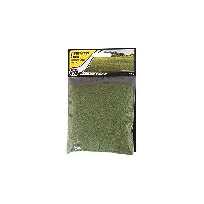 Woodland Scenics FS618 Static Grass, Medium Green 4mm: Toys & Games