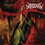 Year Of Desolation by Year Of Desolation