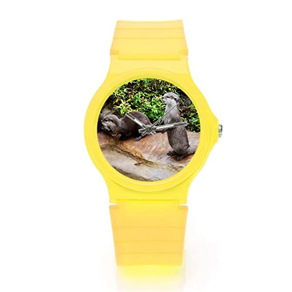 Lifewear Cute nutria nutria de pie sobre una roca - Reloj de pulsera: Amazon.es: Relojes