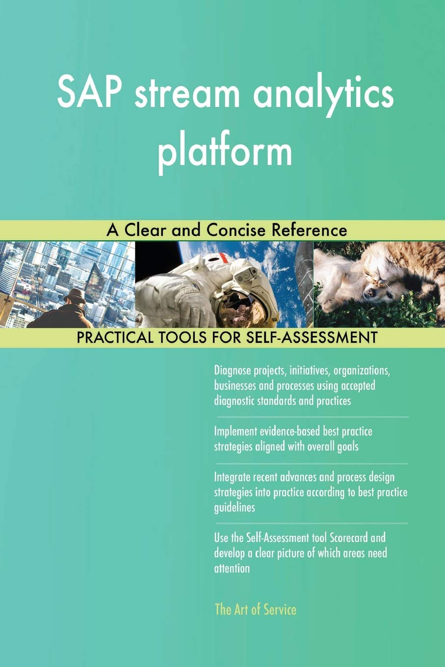 SAP Stream Analytics Platform a Clear and Concise Reference