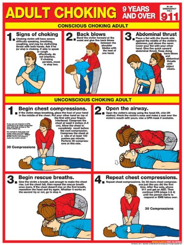 Choking for Adults Laminated Poster