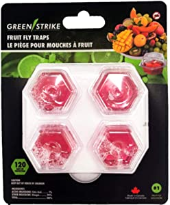 GREENSTRIKE 4 pack Prefilled Fruit Fly Trap - 60004,Red,Small