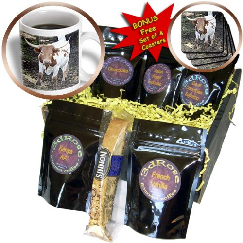 Long Island Italian - Albom Design Animals - Long Horn Steer South Island New Zealand - Coffee Gift Baskets - Coffee Gift Basket (cgb_22807_1)