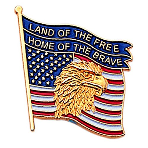 Bravo Awards (American Flag Land of the Free, Home of the Brave Lapel Pin - Pack of 8)