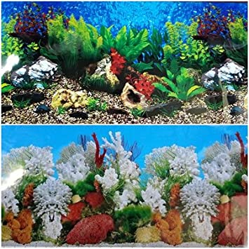 Amazon Com 23 5 Inch Height Double Sided Aquarium Background Blue
