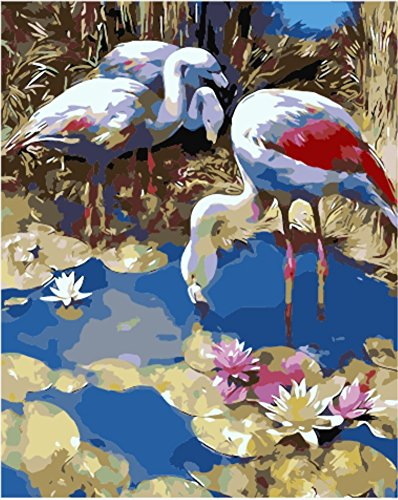 Wowdecor Paint by Numbers Kits for Adults Kids, Number Painting - Andean Flamingos, Big Birds in the Lotus Pond 16x20 inch (Andean Flamingo)