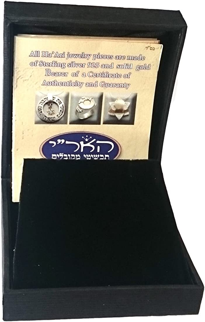HaAri Kabbalah Jewelry Lion of Judah Pendant Necklace Sterling Silver
