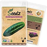 CERTIFIED NON-GMO SEEDS (Appr. 75) - Little Leaf Pickling Cucumber - Non GMO Cucumber Seeds, Open Pollinated - Untreated, Non Hybrid Vegetable Seeds - USA