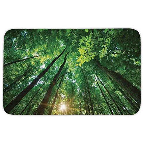 Rectangular Area Rug Mat Rug,Farm House Decor,Sun through Foliage Forest under Tall Trees into the Nature Picture,Green Brown,Home Decor Mat with Non Slip Backing by iPrint
