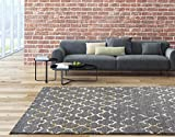 6039 Gray moroccan trellis 7'10×10'6 Area Rug Carpet Large New