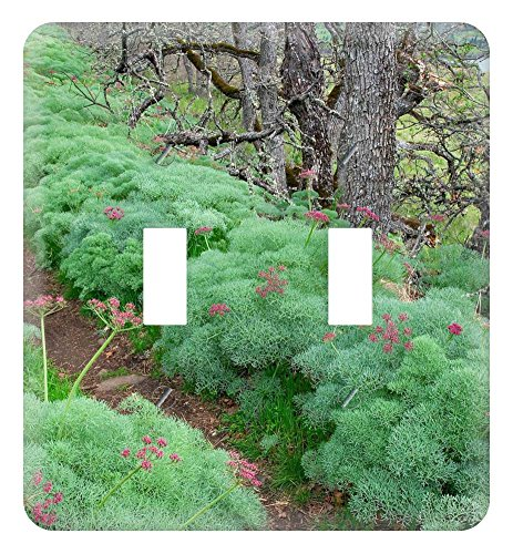WaPlate - Trail-Through-Lomatium-Tom-McCall-Nature Conservancy--Oregon. - Switch Plate Double Toggle