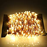 ER CHEN 50m 500-LED Warm White Copper Wire String Fairy Light Lamp Decoration Lighting with 12V AC Adapter for Christmas Party Wedding(165ft )