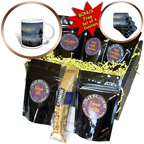 3dRose Danita Delimont - Lakes - Streeter Pond, New Hampshire - Coffee Gift Baskets - Coffee Gift Basket (cgb_259702_1)