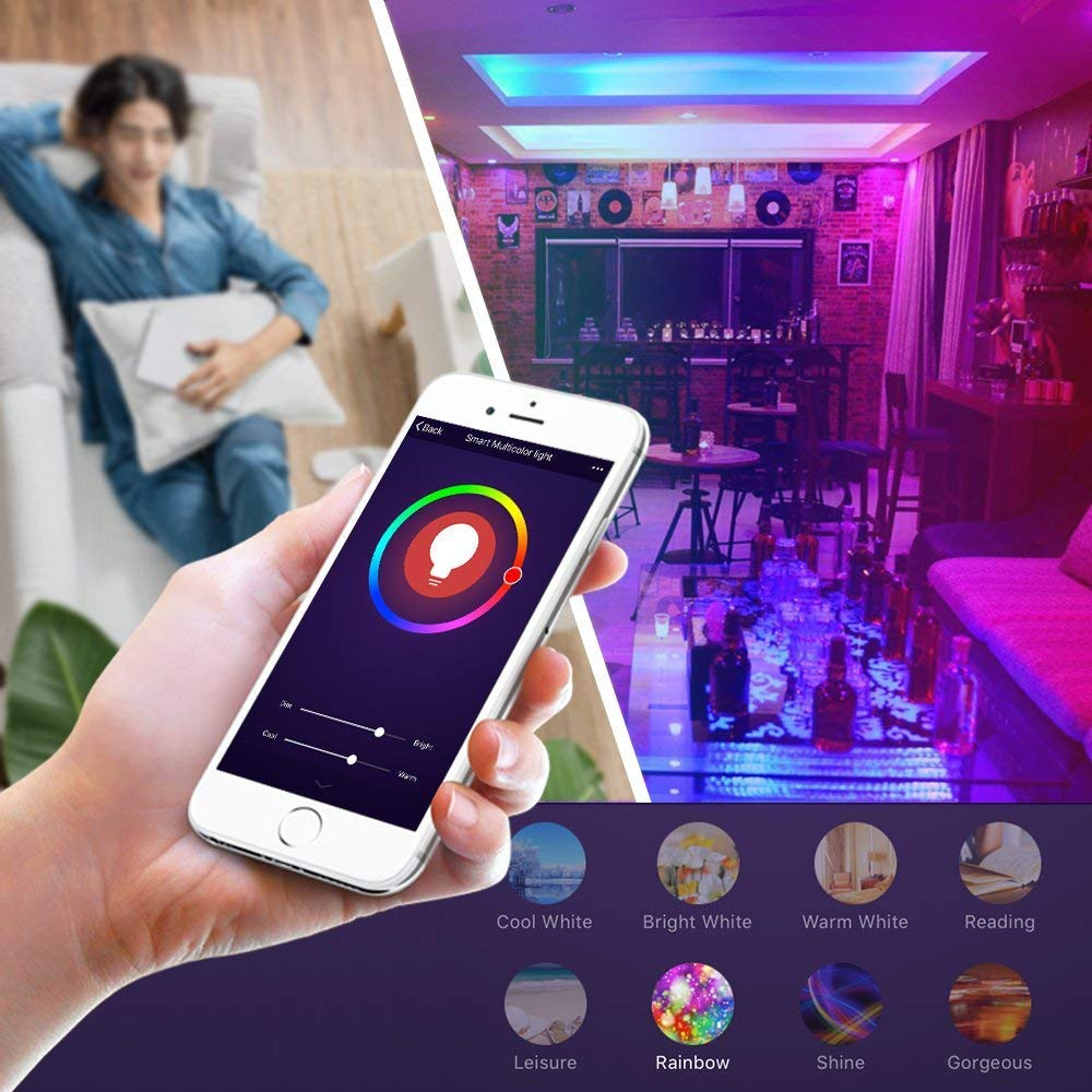 Smart Bulb Works with Alexa Google Home No Hub Required Wi-Fi LED Light E26 A19 2 Pack DOGAIN