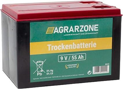Agrarzone - Batteria per staccionata, 55 Ah, 9 V, Zinco: Amazon.it
