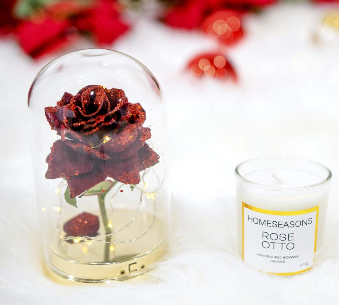HOMESEASONS Pre-Lit Glass Dome Red Rose with Candle Gift Pack (5.5 Inch)