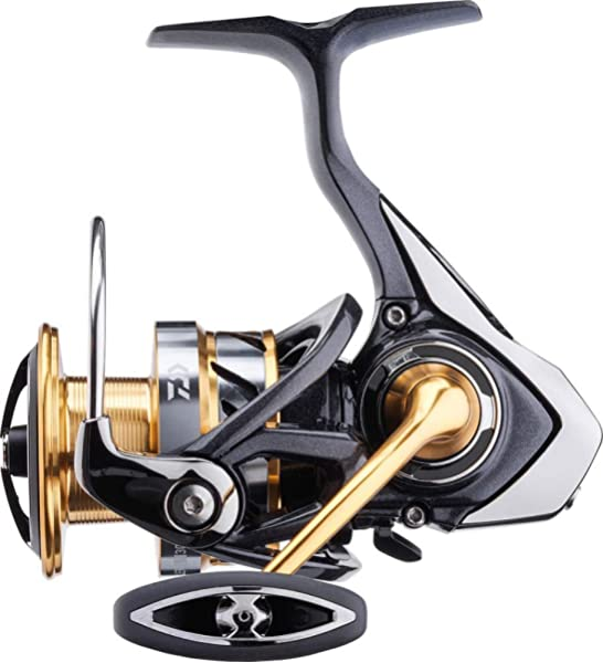 Daiwa - Fishing Reel Exceler 17 Lt 5000 D C - EX17LT5000DC: Amazon ...