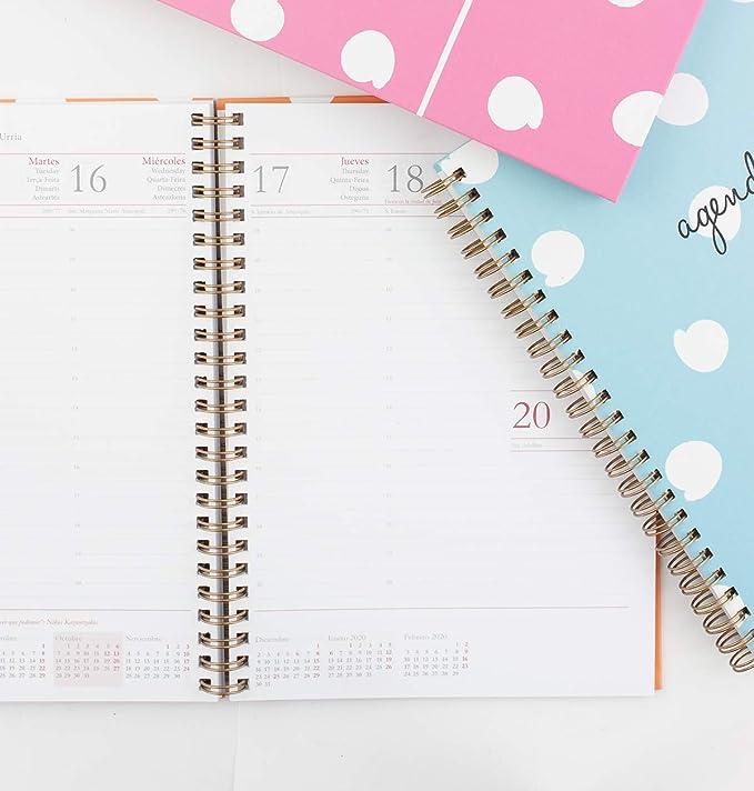 Casterli - Agenda Anual 2019 16x22cm Semana Vista - Estampado Puntitos. (Crema): Amazon.es: Oficina y papelería