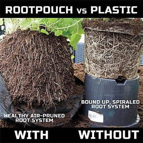 Root Pouch, Boxer Red Best Quality Grow Bag! 5 Gallon Bundle of 10