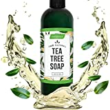 Nature Ace Antifungal Tea Tree Soap - 100% Natural, Pure & Organic Foot and Body Wash - For Acne, Face, Athletes Foot, Jock Itch, Ringworm, Nail Fungus & Body Odor - 12oz With Neem Oil and Lavender