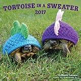 Tortoise in a Sweater 2017 calendar