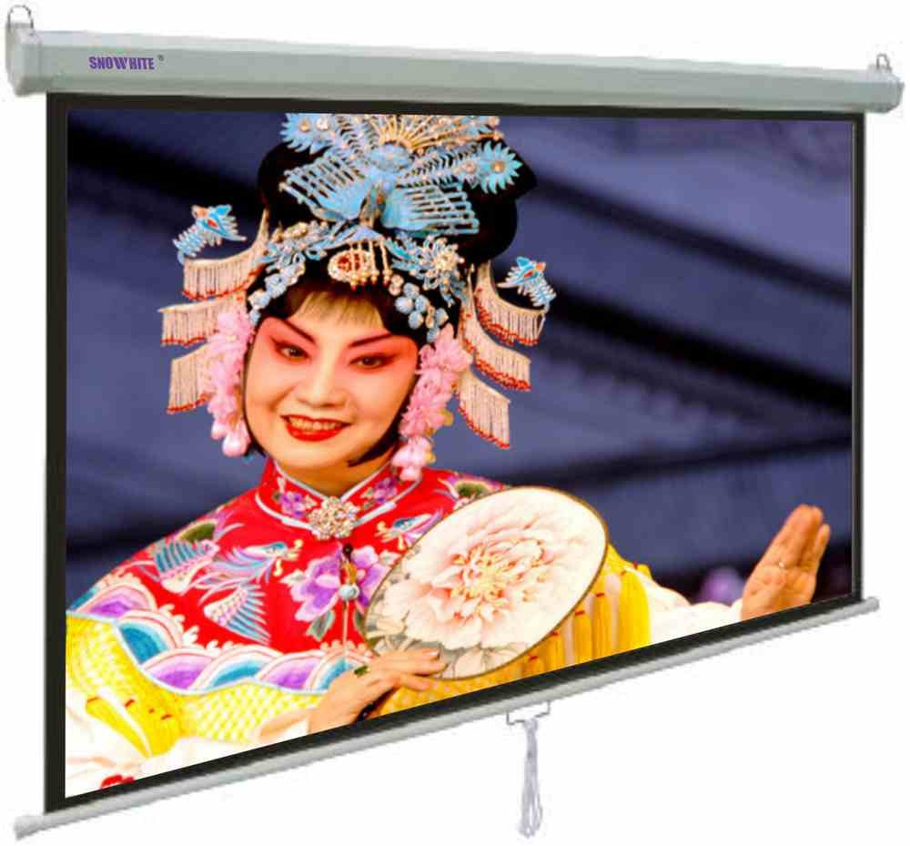 SNOWHITE 60'' Manual Professional Plus pull down projection screen | 60 x 60 inches viewing area | 1:1 format | Wall or ceiling mounting | Gain factor of 1.2 for home cinema & business environments