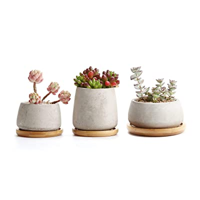 T4U 3 Inch - 4.25 Inch Cement Succulent Cactus Pot, Concrete Planter Pot Container Window Box, Small Clay Pot for Plants Flowers with Drainage Bamboo Tray for Home Decor, Set of 3(Grey): Garden & Outdoor