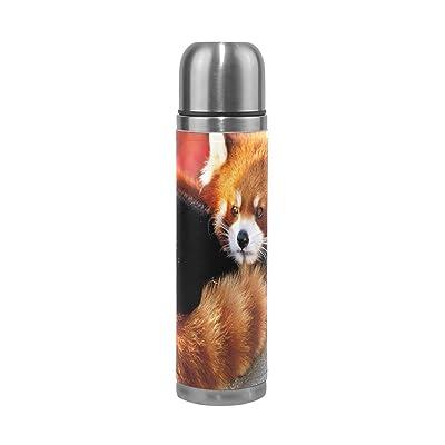 Jstel Panda en acier inoxydable Gourde thermos anti-fuites double Bouteille Vide pour café chaud ou froid à thé + Boisson Tasse Top 500ml