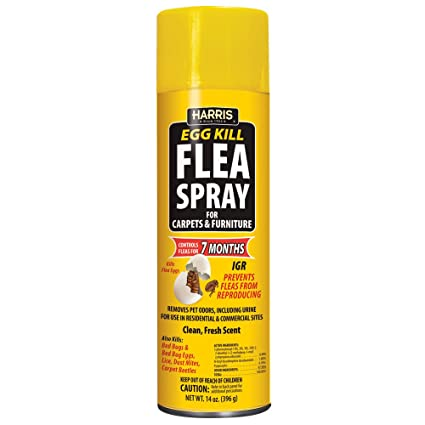 Harris Flea And Egg Killer 14oz Aerosol Spray With 7 Month Residual For Carpets Furniture And More