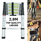Telescopic 2.9M Aluminum DIY foldable extendable Single Straight multi purpose ladder