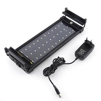 1 pc 36 LED 6 W lámpara de acuario submarino lámpara de - pecera de AC100 - 240 V EU US Toma broche para peces Animal acuático: Amazon.es: Productos para ...