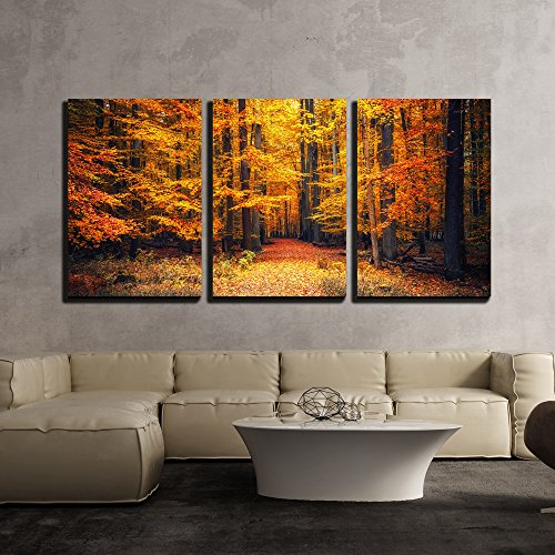 "wall26 - 3 Piece Canvas Wall Art - Pathway in The Autumn Park - Modern Home Decor Stretched and Framed Ready to Hang - 16""x24""x3 Panels"