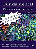 Fundamental Neuroscience, Third Edition Picture