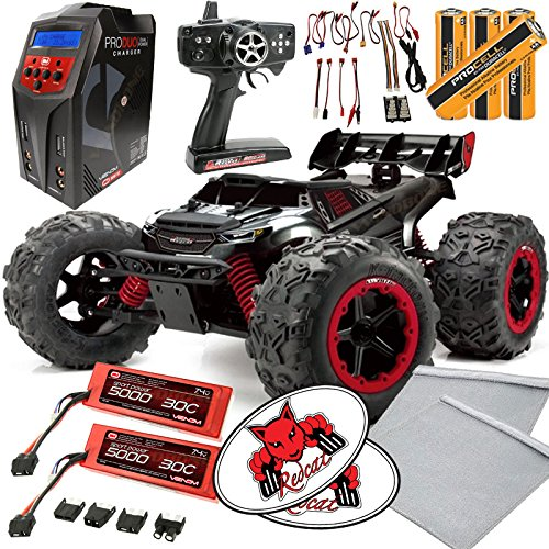 Battery RC truck