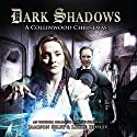 Dark Shadows - A Collinwood Christmas Audiobook by Lizzie Hopley Narrated by Lizzie Hopley, Jamison Selby